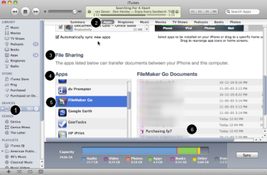 Getting FileMaker Go databases onto an iOS device using