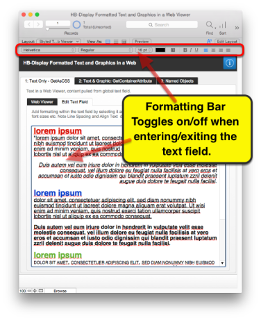 Display Formatted Text in a Web Viewer   HomeBase Software